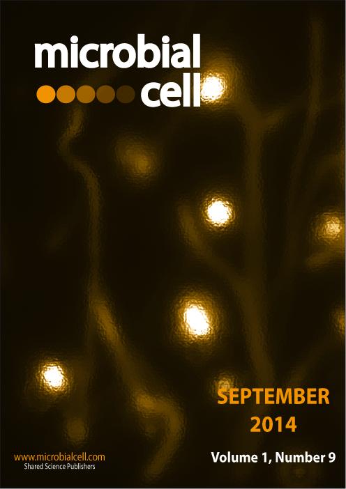Cover MIC September 2014
