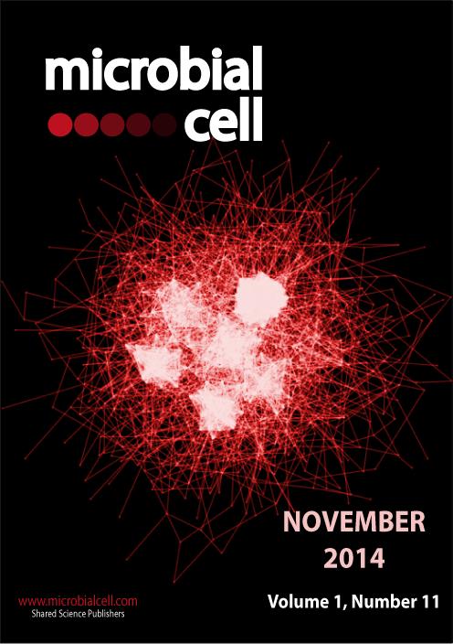 Cover MIC November 2014