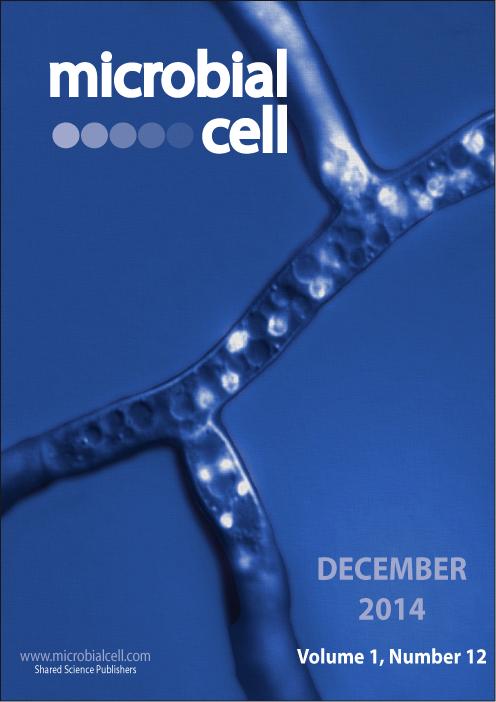 Cover MIC December 2014