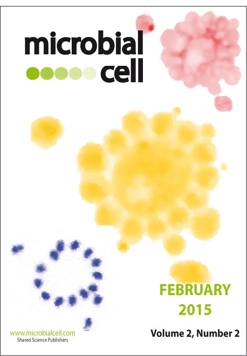 Cover MIC February 2015