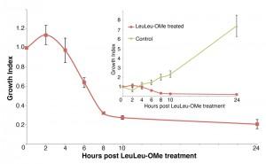 Figure 1 LeuLeu-OMe-mediated lysosme destabilization and cell death in T. brucei