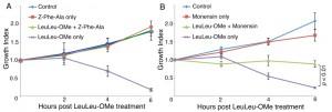 Figure 4 LeuLeu-OMe-mediated lysosme destabilization and cell death in T. brucei