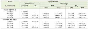 Table 1 Micafungin induced apoptosis in C. parapsilosis