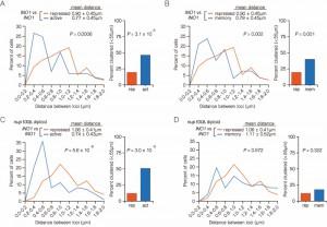 Figure 5 Interchromosomal clustering during transcriptional memory.