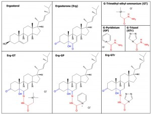 Figure 1 Effect of ergosterone-triazol derivatives on L. mexicana