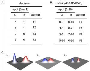 Figure 2 Fate choice in yeast