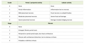 Table 2 Hepatitis B virus and its sexually transmitted infection