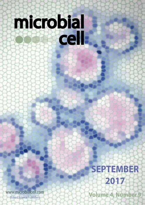 Cover MIC September 2017