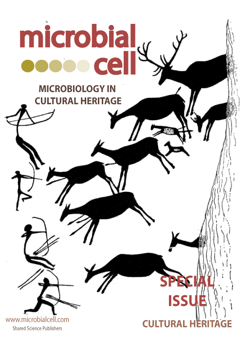 MIC (Special Issue in Cultural Heritage)
