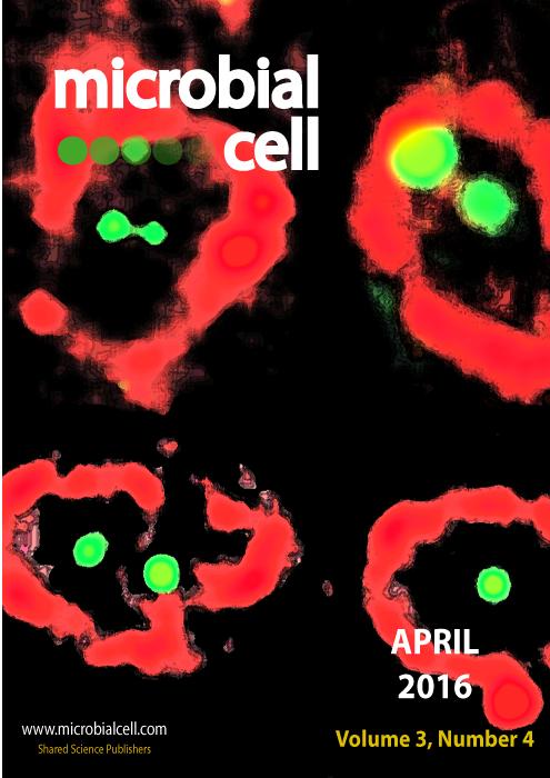 Cover MIC April 2016