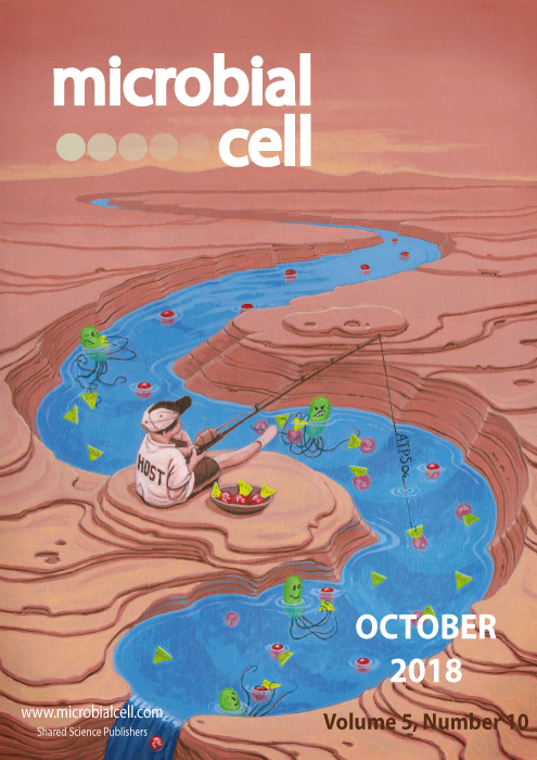 Cover MIC October 2018