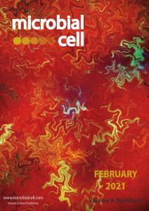 Cover MIC February 2021
